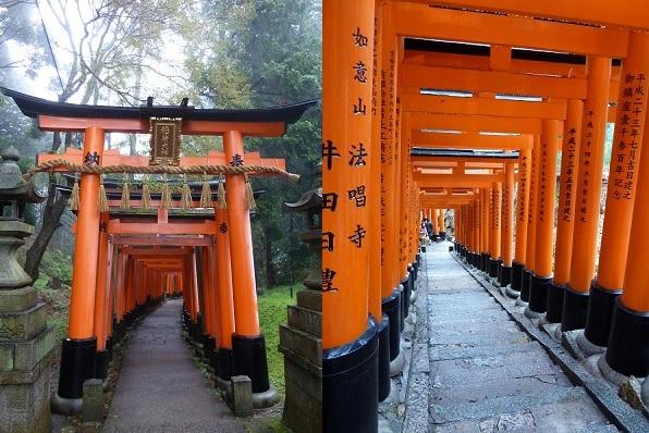 kyoto-fushimi-inari-torii