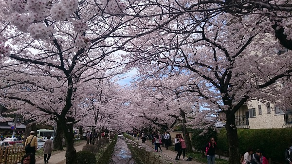 kyoto-philosopher-path